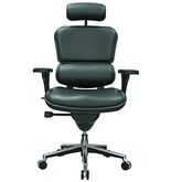 Eurotech Ergohuman LE9ERG, Ergonomic Executive Leather Chair...