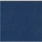 Akiles 16 Mil Navy Blue Leather Embossed Plastic Binding Rep...
